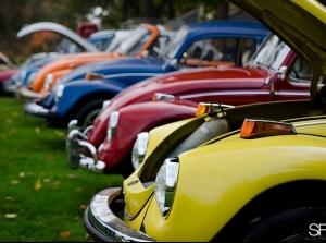 Ngày hội của những chú bọ VW