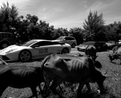 Car&Passion - hành trình siêu xe 2012 khởi động