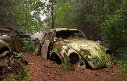 Chiêm ngưỡng nghĩa địa xe bị bỏ quên giữa rừng sâu