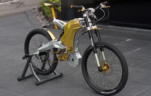 Cận cảnh xe đạp mạ vàng, giá 1,2 tỷ đồng