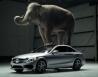 Mercedes dùng voi để quảng cáo C-Class