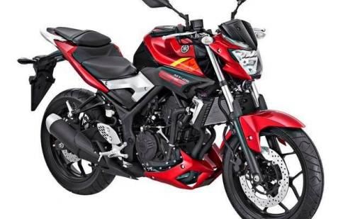 Yamaha MT-25 ra mắt tại Indonesia