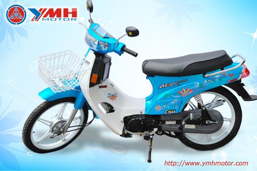 Xe Max Kawasaki Cc